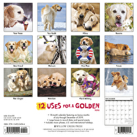 Calendar - 12 Uses for a Golden 2020 Wall Calendar