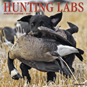 Calendar - Just Hunting Labs 2020 Wall Calendar