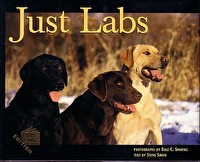 Just Labs